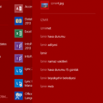 Windows 8.1 Integrated Search